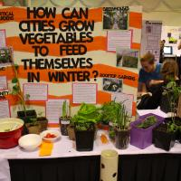 science fair poster about urban gardens with plants in front of it