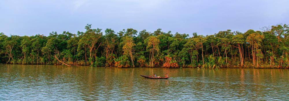 Mangrove trees and river with a two men on a small fishing boat